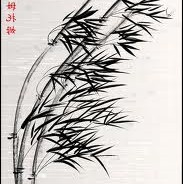 Bamboo never breaks, but bends with the changing winds of life…